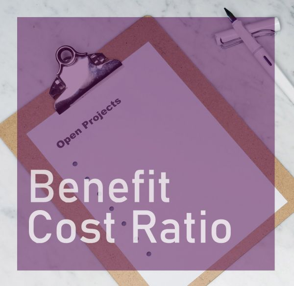 Benefit Cost Ratio